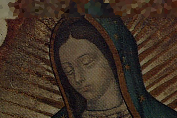 181212_Guadalupe_cv